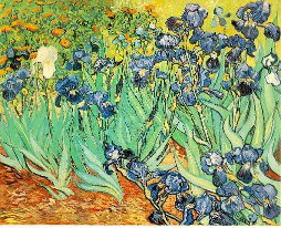 VanGogh-Irises_111-918fa